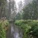 030-Rivier de Mark door natuurgebied