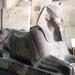 1a EM_nieuw  koninkrijk_Hatshepsut_als sfinx