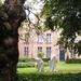 2012_10_05 VAPH Antwerpen 012