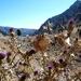 2012_09_16 Cappadocie 023