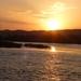 Zonsondergang op de Nijl...