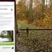 2012_11_18 Denderleeuw 01