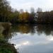 2012_11_18 Denderleeuw 11