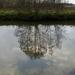 2012_11_18 Denderleeuw 16