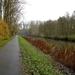 2012_11_18 Denderleeuw 19