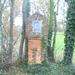 2008-11(nov) 15 Meerhout 003