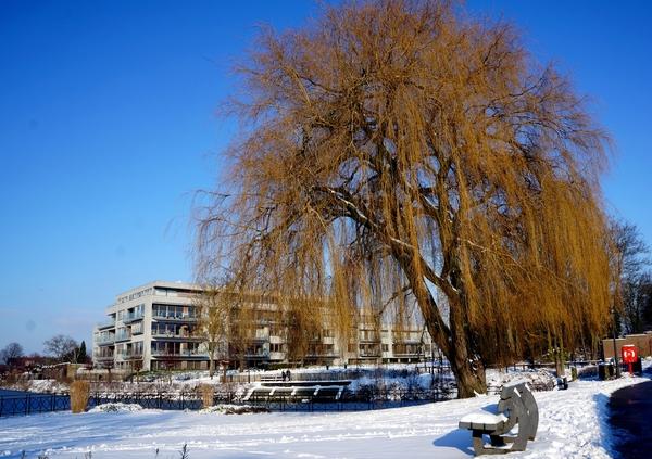 Sneeuwfoto\'s-2013