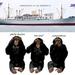 de  bonobo's uit Antwerpen , de tegenstand
