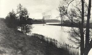 Oude foto 1920 Molenvest , een van de enige en zeldzame