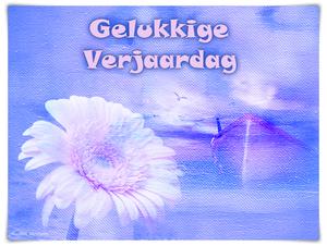 blauw en roze