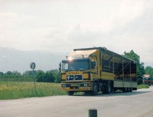 VG-10-BX