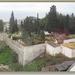 sized_IMG_4611 Kerkhof Monte.