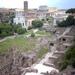 Forum Romanum_IMAG1263