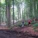 2007_06_RONSE_door het bos voor het rustpunt