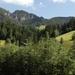 Aviat Tirol 2008 018