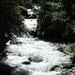 Aviat Tirol 2008 034