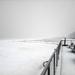 Sneeuw op het strand van Koksijde.