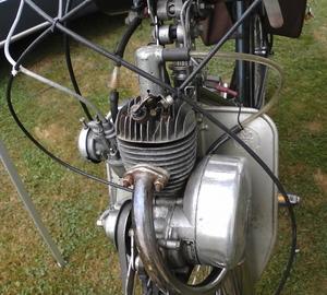 Rex. FM40
