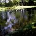 het kanaal van Beverlo