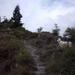 20060604 Boppard 001 Klettersteig