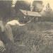 de Visputten van Kruibeke in 1948