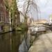 Brugge Februari 2014 016