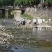 Navarra hugo 2008 059