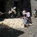 Navarra hugo 2008 065