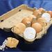 Eierdoos met witte en bruine kopjes1