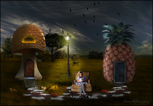 ananas huisje