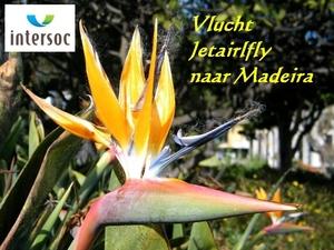 2014_04_21 Madeira 001C