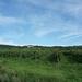 3 Rudesheim, wandeling naar Asbach _P1190921