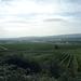 3 Rudesheim, wandeling naar Asbach _P1190933