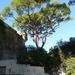 Corsica 2014 032