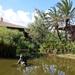 005 Mallorca oktober 2014 - hotel en tuin