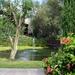 006 Mallorca oktober 2014 - hotel en tuin