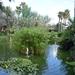 008 Mallorca oktober 2014 - hotel en tuin
