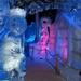 2014_11_22 Brugge ijssculpturenfestival 017