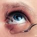 oogworm