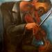 de violist 1