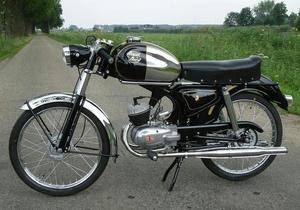 Royal Nord GT