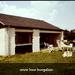 Vakantie, Leiwen (1978 Dld)