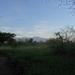 1d Kilimanjaro, lodge _DSC00003