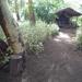 2b Lake Manyara, Lodge _P1210409