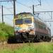 385 Sint-Katelijne-Waver 20140520 (2)