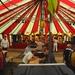 Schuttersfeest Niel bij As 2013 012