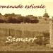 2015_07_31 Samart 00