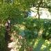 2015_08_30 Florennes 24