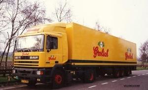 DAF-95 GROLSCH