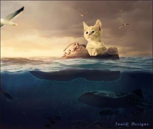 onder water scéne